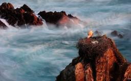 Al límite de las mareas
